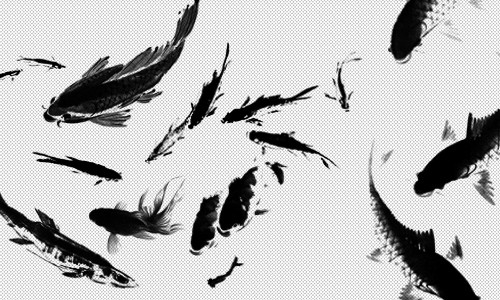 ink-fish