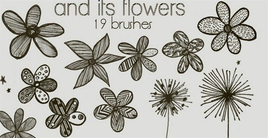 and its flowers – brushes