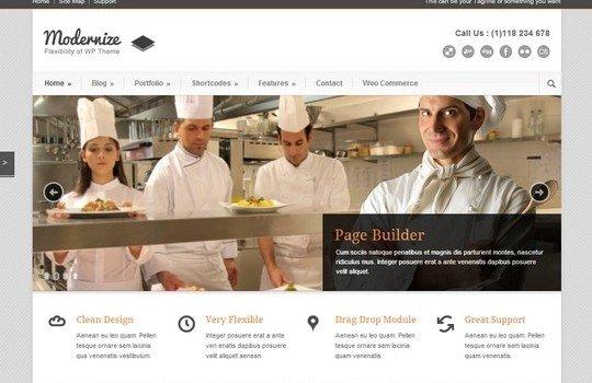 Modernize – Flexibility Of WordPress