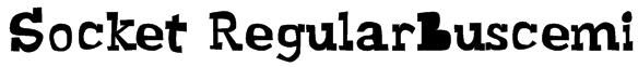 Socket RegularBuscemi Font