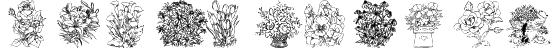 Flower Shower Font