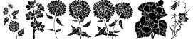 DT Flowers 1 Font