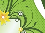 Floral Announcement Vector Banner