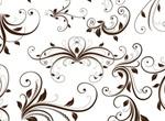 Mega Swirl Floral Decorative Element Vector Graphic Pack