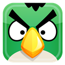 Angry, Bird, Green Icon