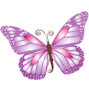 Butterfly, Purple Icon