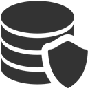 Data, Protection Icon