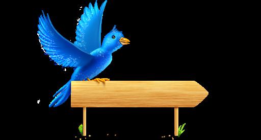 Bird, Sign, Sparkles Icon