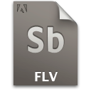 Document, File, Flv, Sb, Secondary Icon