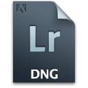 Dng, Document, File, Lr, Secondary Icon