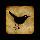 Bird, Paper, Twitter Icon