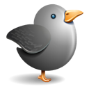 Bird, Gray, Grey, Twitter Icon