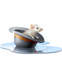 Animal, Chapeau, Eau, Hat, Mouse, Pool, Rat, Souris, Water Icon