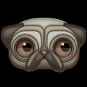 Animal, Pug Icon