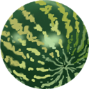 Melon, Water Icon
