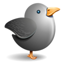 Bird, Grey, Twitter Icon