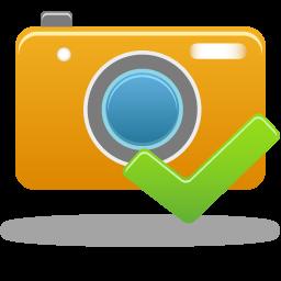 Accept, Camera Icon