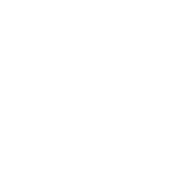Icon fx forex