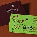 B66Living