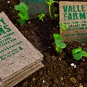 Peat Moss Business Cards