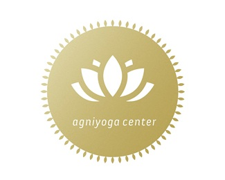 fire,Power,energy,yoga,holistic logo